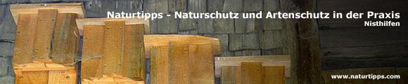 naturtipps nisthilfen f r flederm use. Black Bedroom Furniture Sets. Home Design Ideas